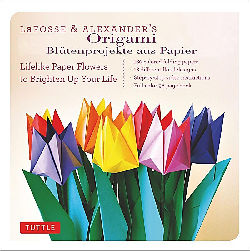 Origami Buch von Michael G. LaFosse portofrei bei Weltbild.de - photo#20