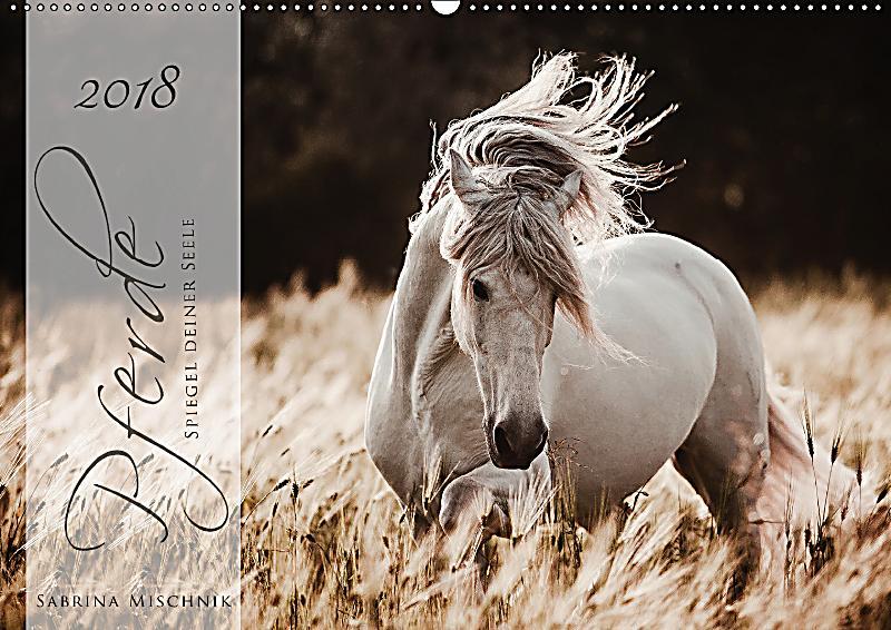 Pferde spiegel deiner seele wandkalender 2018 din a2 for Spiegel 7 2018