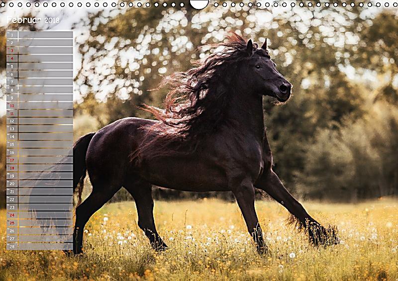 Pferde spiegel deiner seele wandkalender 2018 din a3 for Spiegel 7 2018
