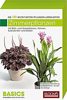 Pflanzen lernkarten die 100 wichtigsten zimmerpflanzen for Pflanzen zimmerpflanzen