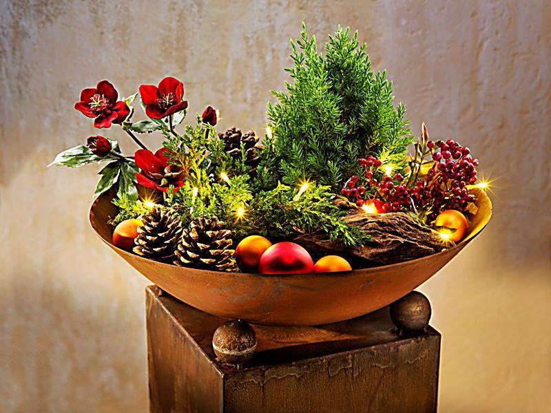 Pflanzs ule mit schale albero bei weltbild bestellen for Deko rostoptik