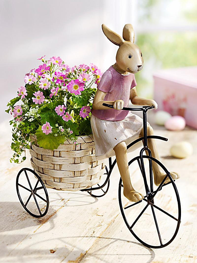 pflanztopf hase auf fahrrad jetzt bei bestellen. Black Bedroom Furniture Sets. Home Design Ideas