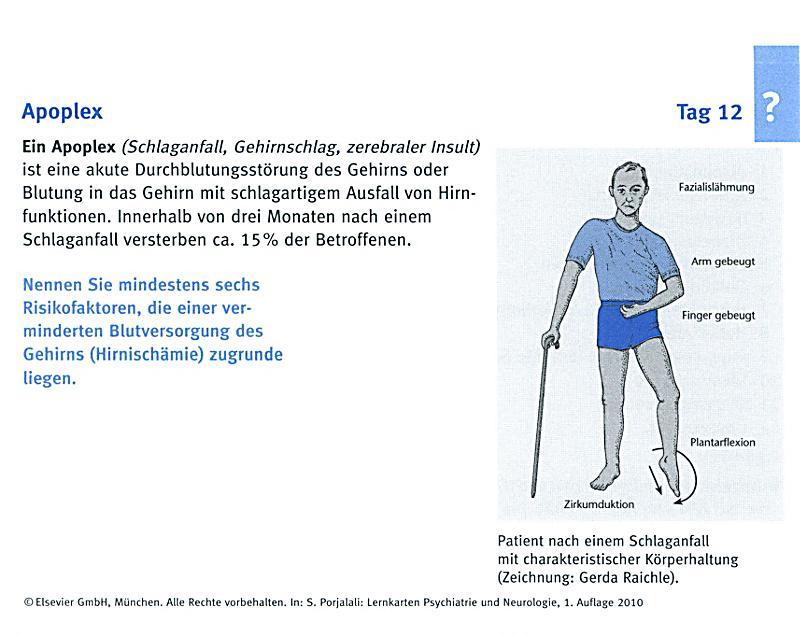 Ungewöhnlich Anatomie Und Physiologie Von Cva Schlaganfall ...