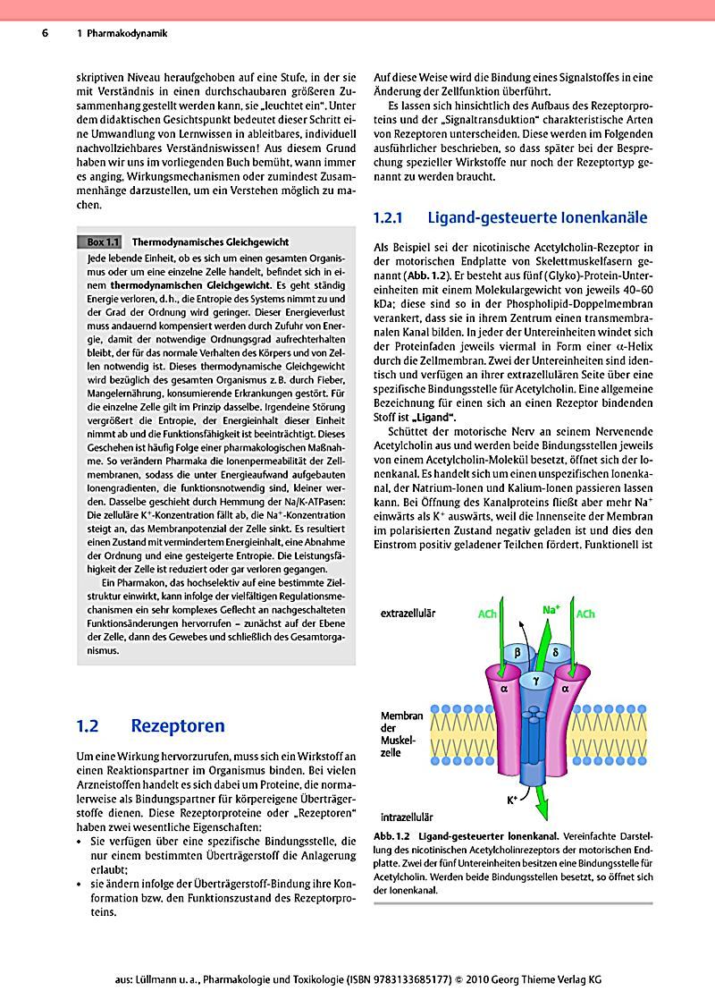 pdf Eisenguß in Dauerformen