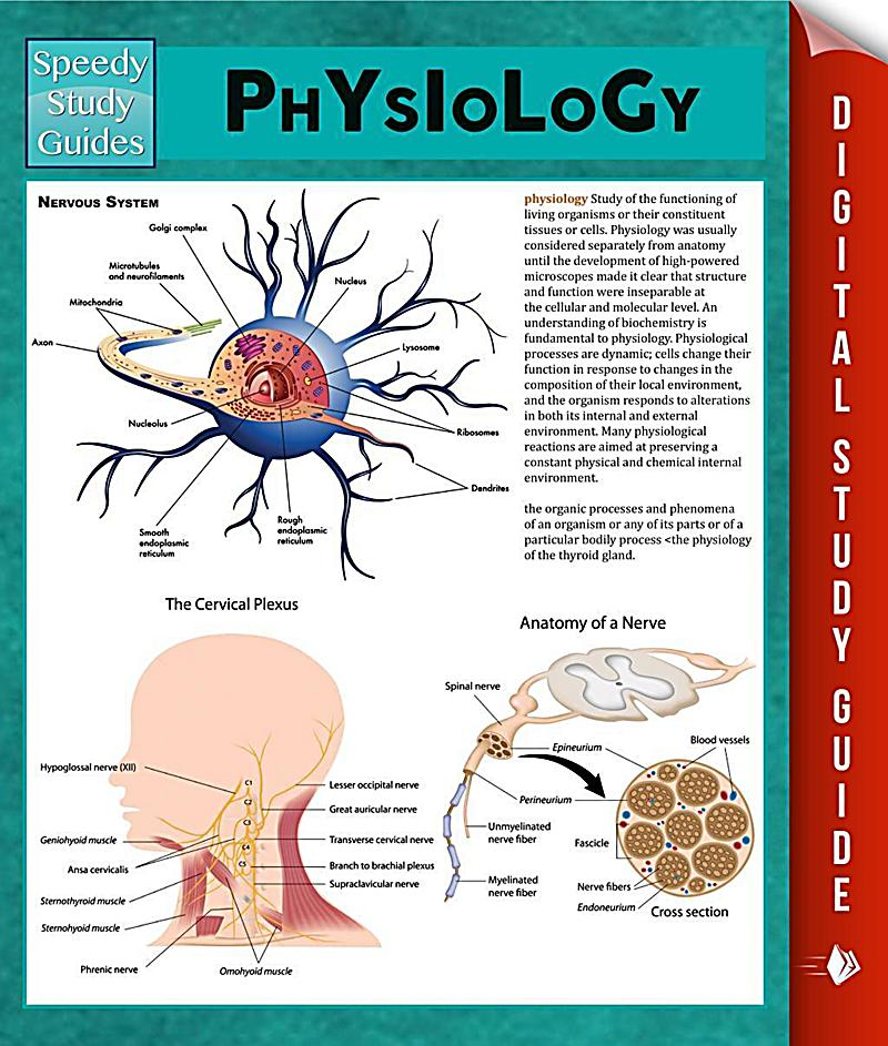 anatomy and physiology ebook pdf download