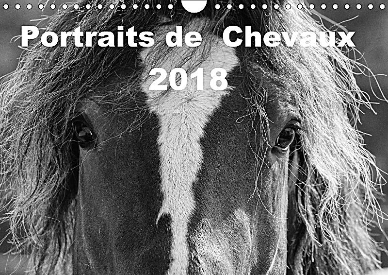 portraits de chevaux 2018 wandkalender 2018 din a4 quer kalender bestellen. Black Bedroom Furniture Sets. Home Design Ideas