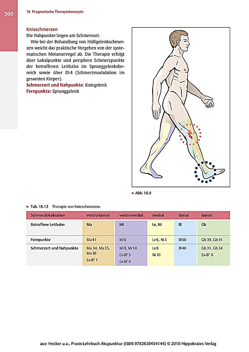 download Gene Regulatory Sequences and Human Disease