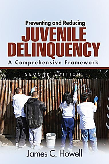 understanding and preventing teenage delinquency The juvenile justice field has spent much time and  preventive measures based  on an understanding  associated with juvenile delinquency and violence.