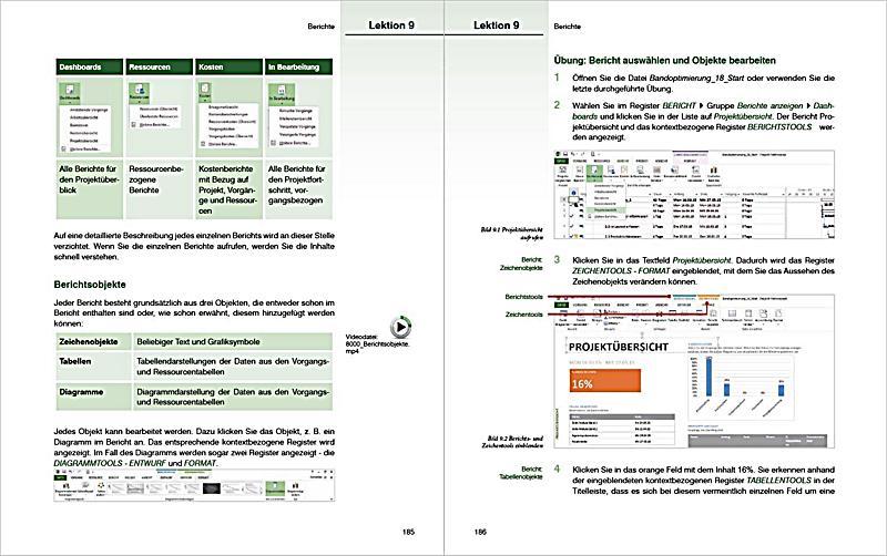 Project 2013 Buch von Gerlinde Dörfel portofrei bei Weltbild.de