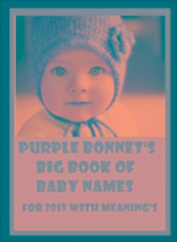 big book of baby names pdf