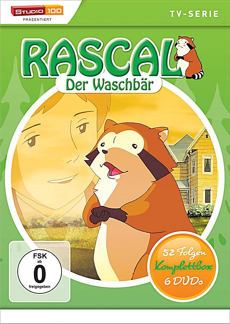 Rascal Der Waschbär