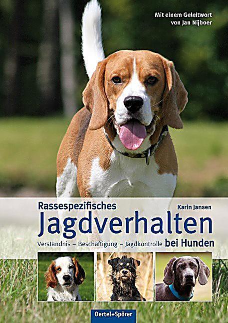 Analbeutel Adenokarzinom bei Hunden