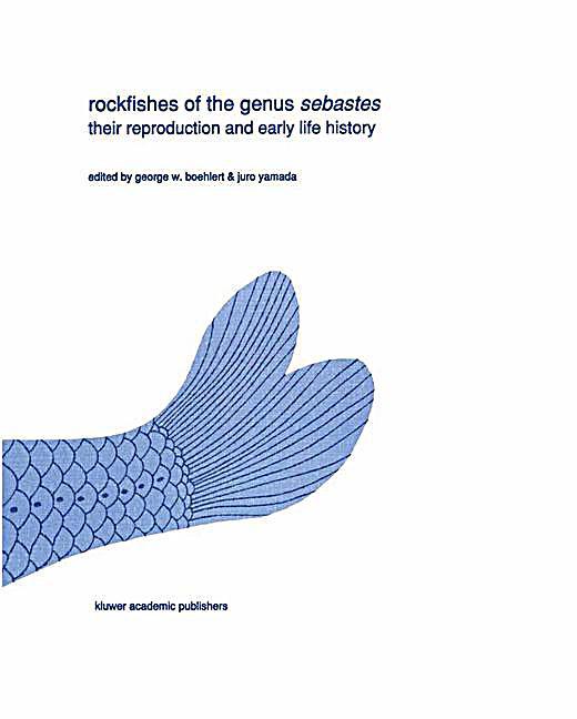 download Методология анализа и синтеза предельно нагруженных информационных
