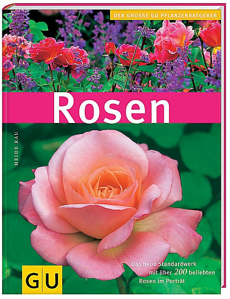 Rosen buch jetzt portofrei bei bestellen for Gartengestaltung joanna