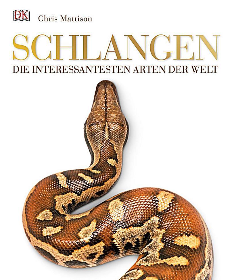 Ausgezeichnet Weibliche Schlange Anatomie Zeitgenössisch - Anatomie ...