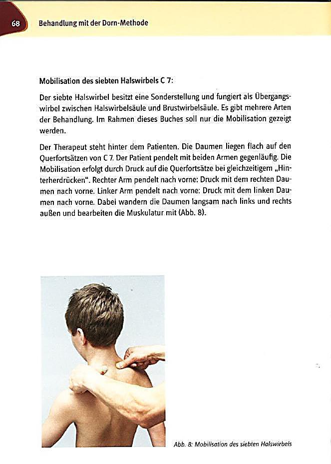 Ausgezeichnet Siebte Halswirbel Fotos - Menschliche Anatomie Bilder ...