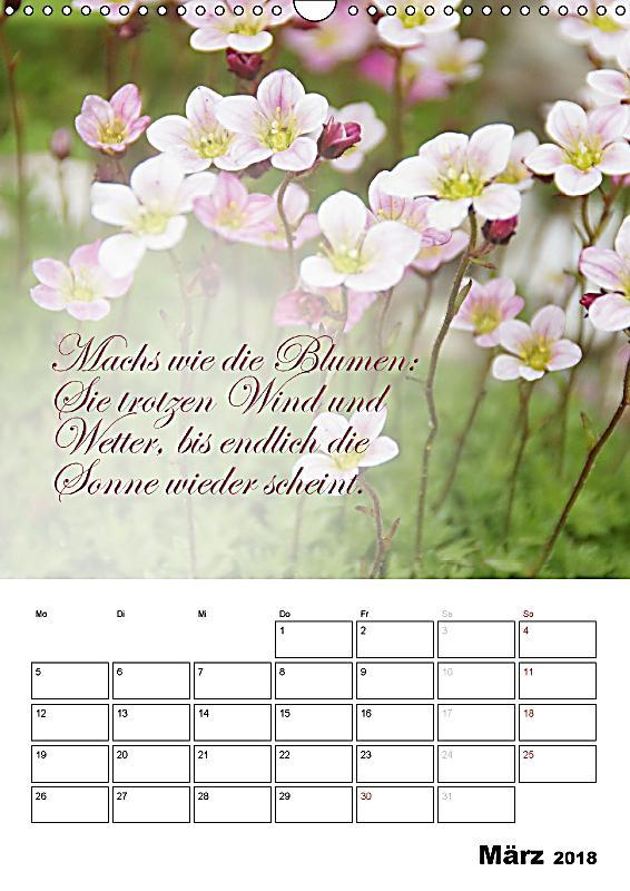 sch ne spr che f r dein ganzes jahr wandkalender 2018 din a3 hoch kalender bestellen. Black Bedroom Furniture Sets. Home Design Ideas
