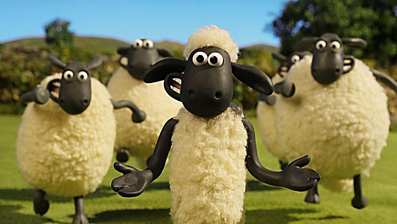 Shou Das Schaf