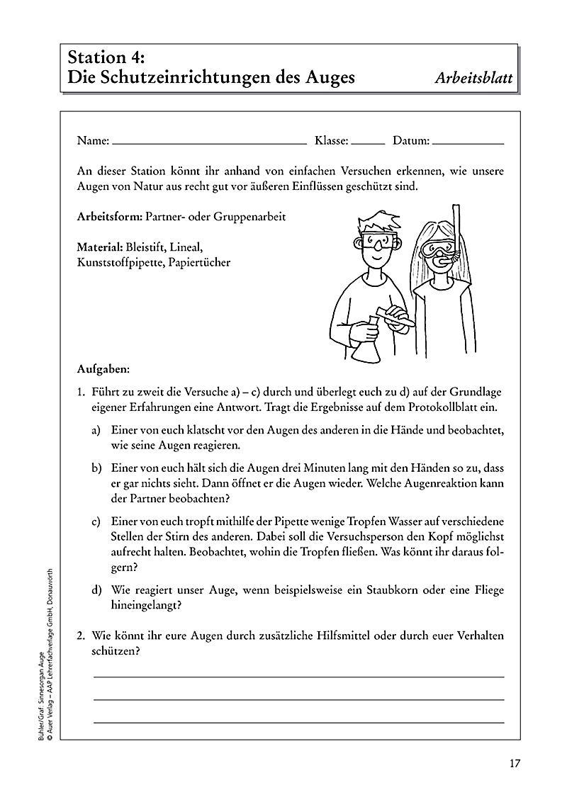 Sinnesorgan Auge Buch von Tanja Bühler portofrei bei Weltbild.de