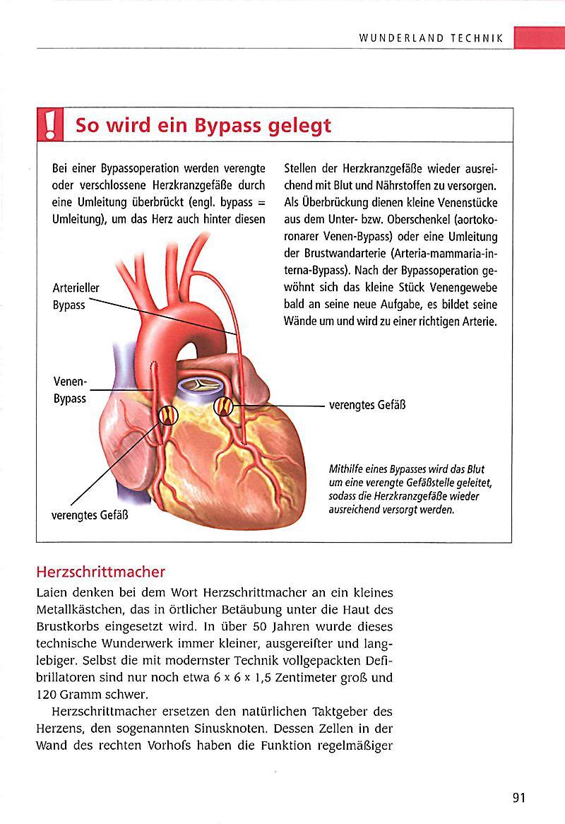 Großartig Arterien Und Venen Anatomie Bilder - Anatomie Ideen ...
