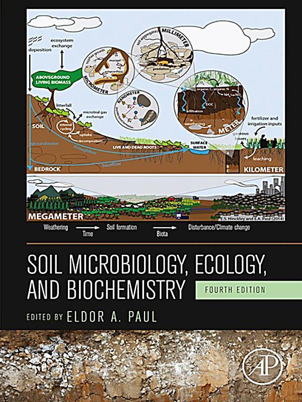 ebook Методы пчеловождения 1995