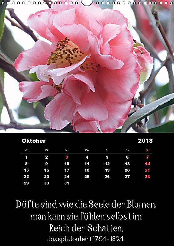 Spr che und zitate ber hmter personen ber blumen und - Blumen zitate ...