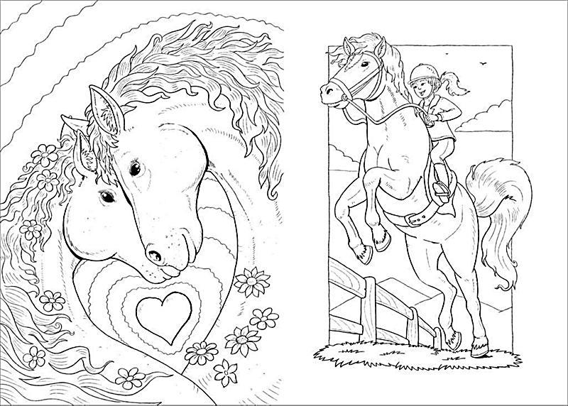Wunderbar Pferde Malbuch Ideen - Malvorlagen-Ideen - decentexposure.info