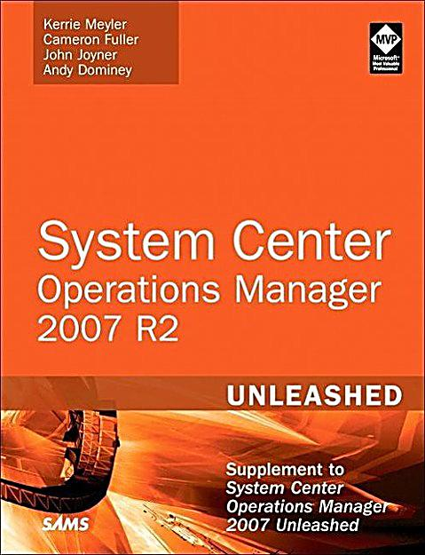 operations centralized project system You will only succeed in this if you use a central database once you have reached a certain number of projects create a decision matrix to differentiate between operations and different project types figure 3: project-worthiness analysis for distinguishing between operations and project types.