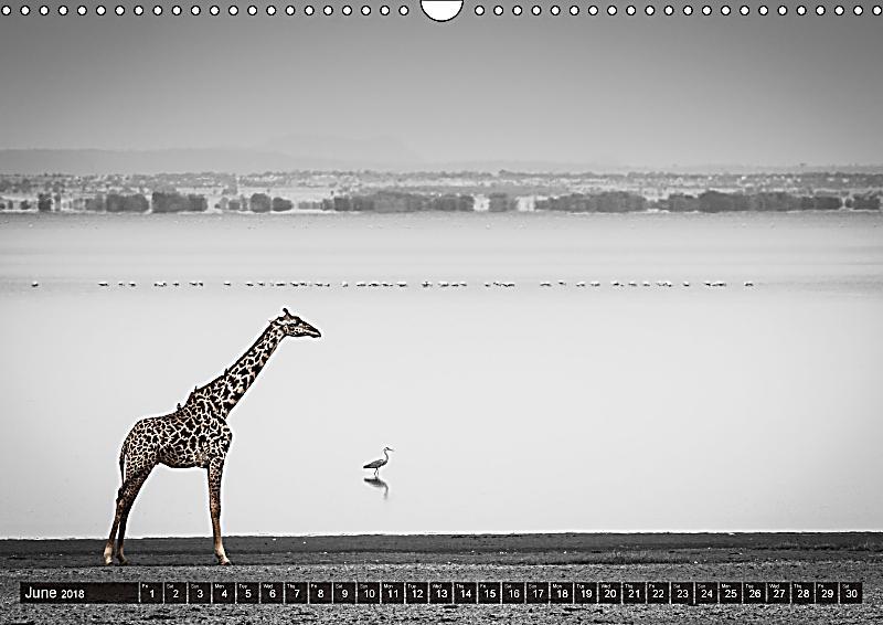 Calendar Fine Art : Tanzania fine art wall calendar din a landscape