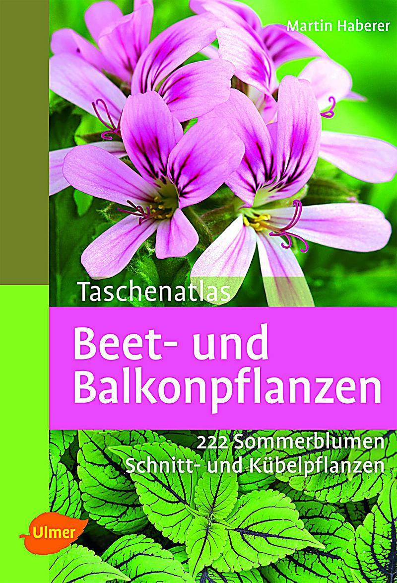 Taschenatlas beet und balkonpflanzen buch for Beet und balkonpflanzen