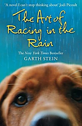 essays on the art of racing in the rain