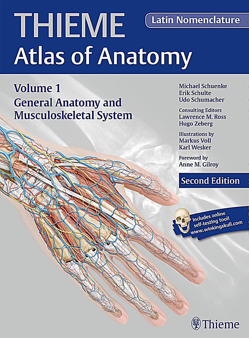 General anatomy and musculoskeletal system