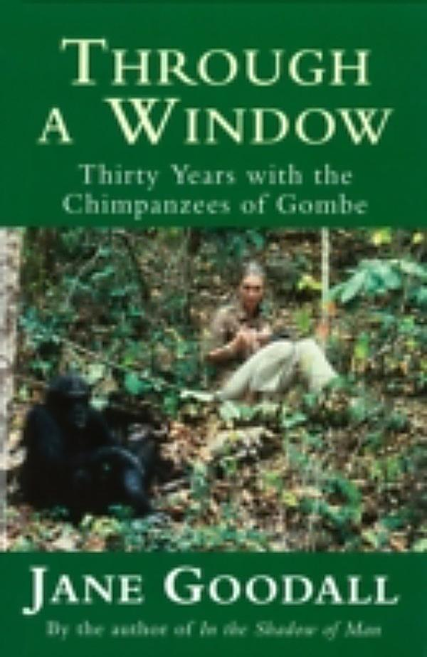 through a window by jane goodall Jane goodall is more than just the chimpanzee lady her work gives new insight to our own humanness and humaneness we now have the knowledge to explore our own behaviors and emotions in a new light we share many things with chimpanzees jane goodall has shown us this through her research at the gombe.