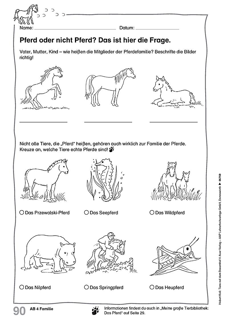 Tiere auf dem Bauernhof, 1-4. Klasse Buch portofrei - Weltbild.at