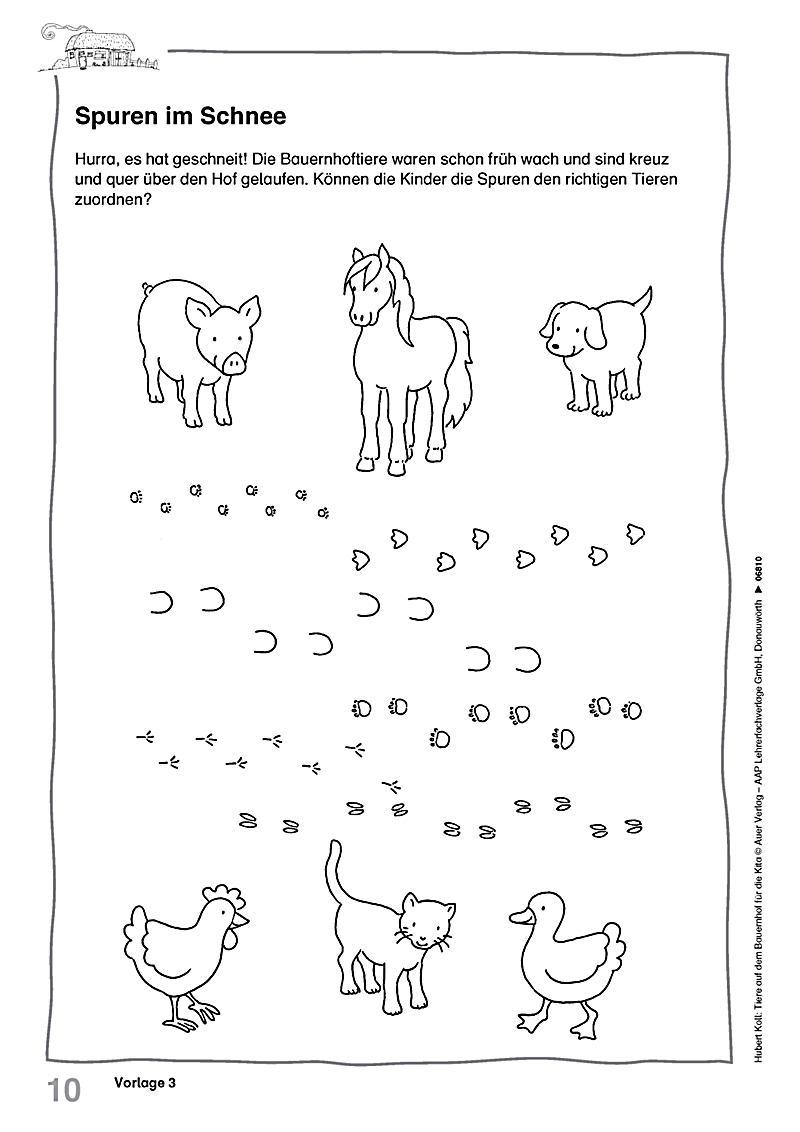 Unique Tier Arbeitsblatt Vorschule Gift - Kindergarten Arbeitsblatt ...