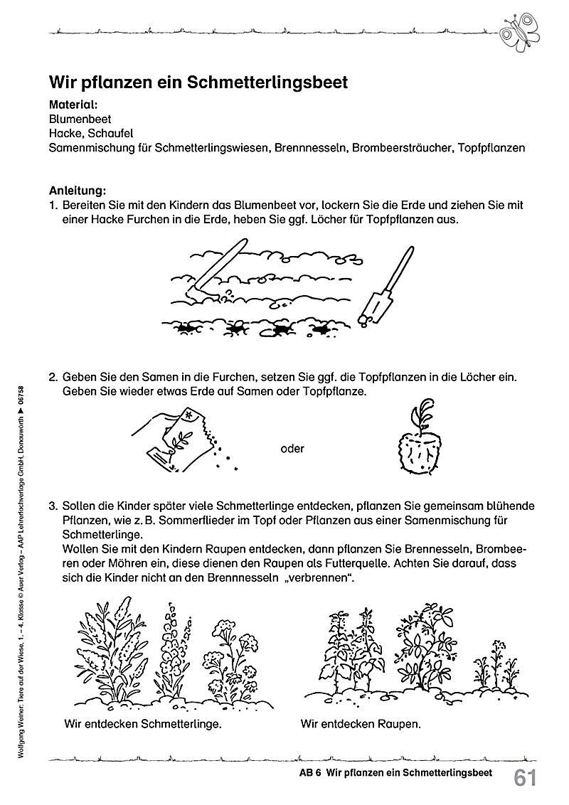 Tiere auf der Wiese, 1.-4.Klasse Buch portofrei bei Weltbild.de