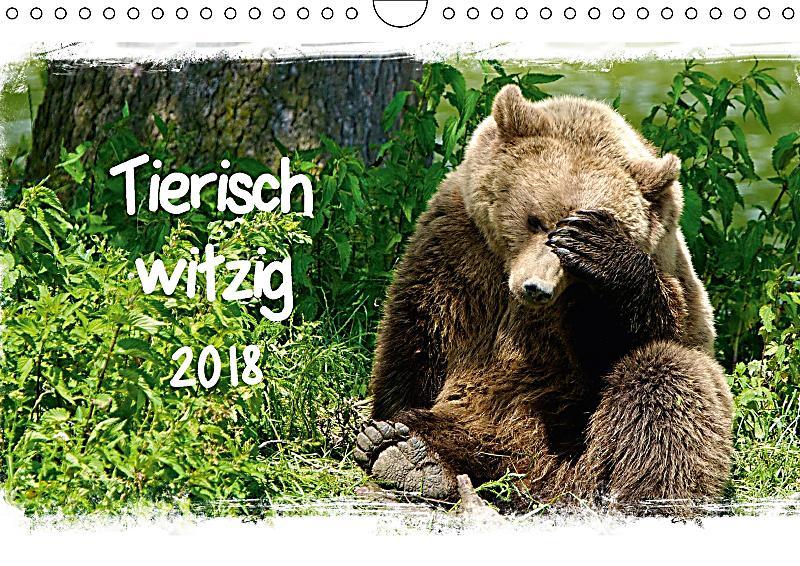 tierisch witzig wandkalender 2018 din a4 quer kalender bestellen. Black Bedroom Furniture Sets. Home Design Ideas
