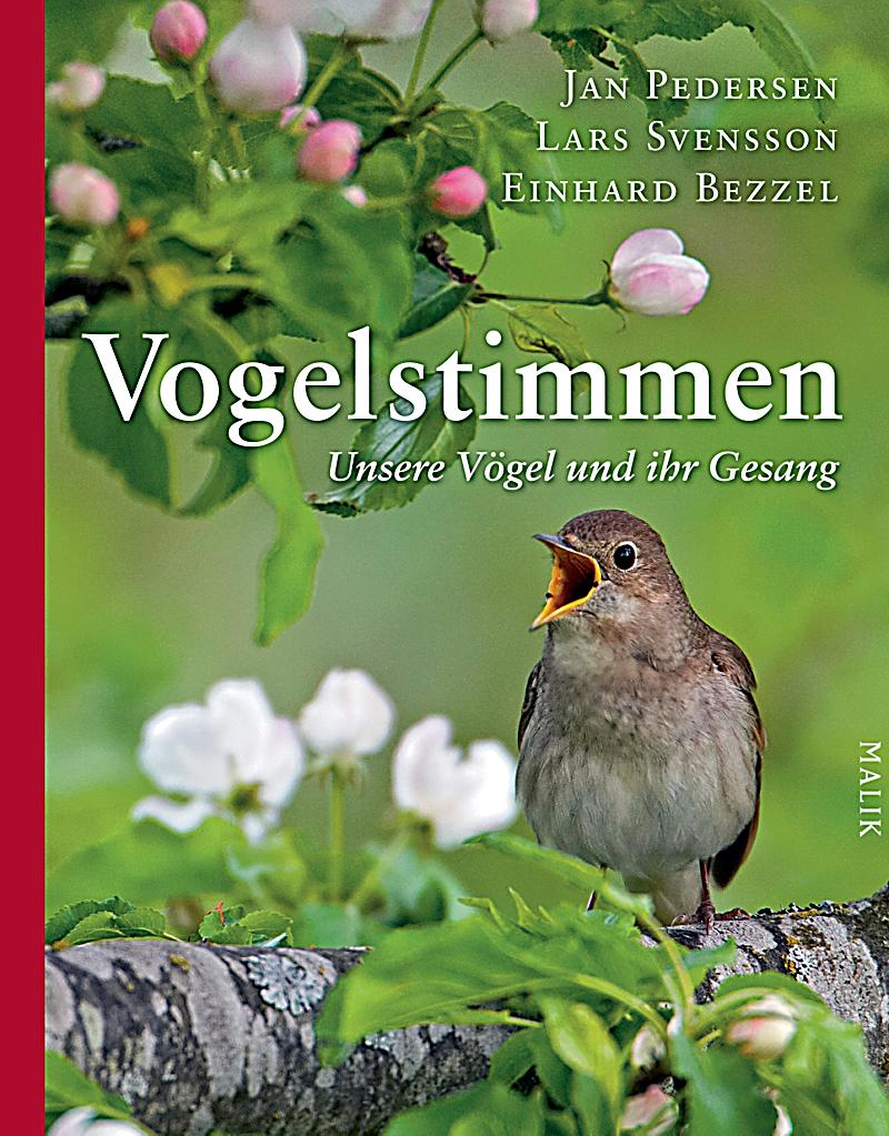 vogelstimmen m abspielger t buch portofrei bei. Black Bedroom Furniture Sets. Home Design Ideas