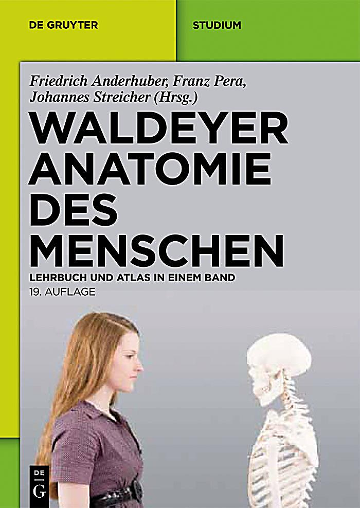 Waldeyer - Anatomie des Menschen: ebook jetzt bei Weltbild.de