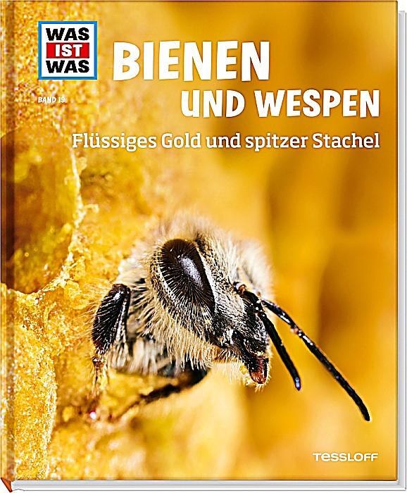 was ist was bienen und wespen buch bei bestellen. Black Bedroom Furniture Sets. Home Design Ideas
