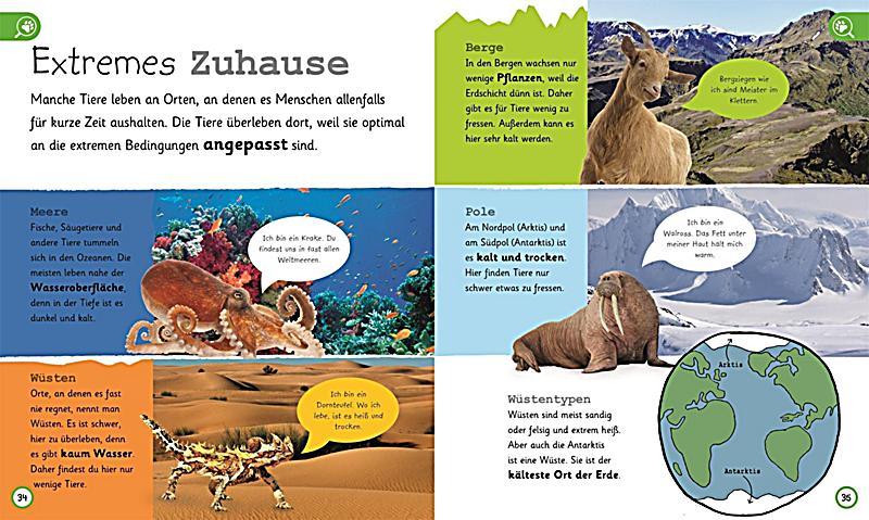 Was weißt du über Tiere? Buch bei Weltbild.de online bestellen