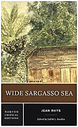 rhys in wide sargasso sea analysis Bbc film kudos film and television starring ralph spall, rebecca hall original music by nina humphreys adaptation of jean rhys' novel, written as a prequel.