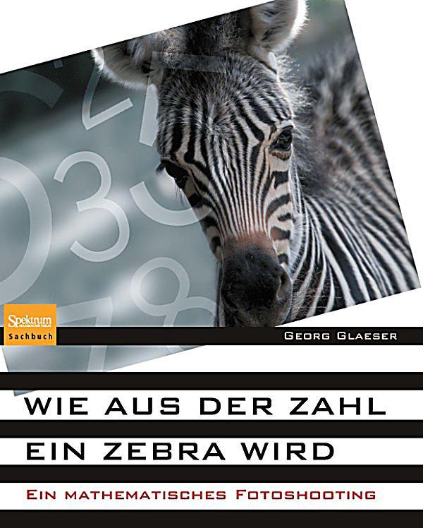 wie aus der zahl ein zebra wird ebook jetzt bei. Black Bedroom Furniture Sets. Home Design Ideas