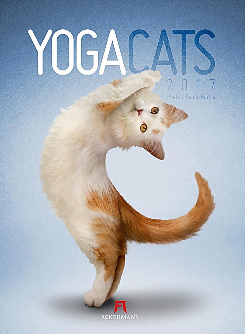 Yoga Cats 2017 - Kalender jetzt günstig bei weltbild.de bestellen