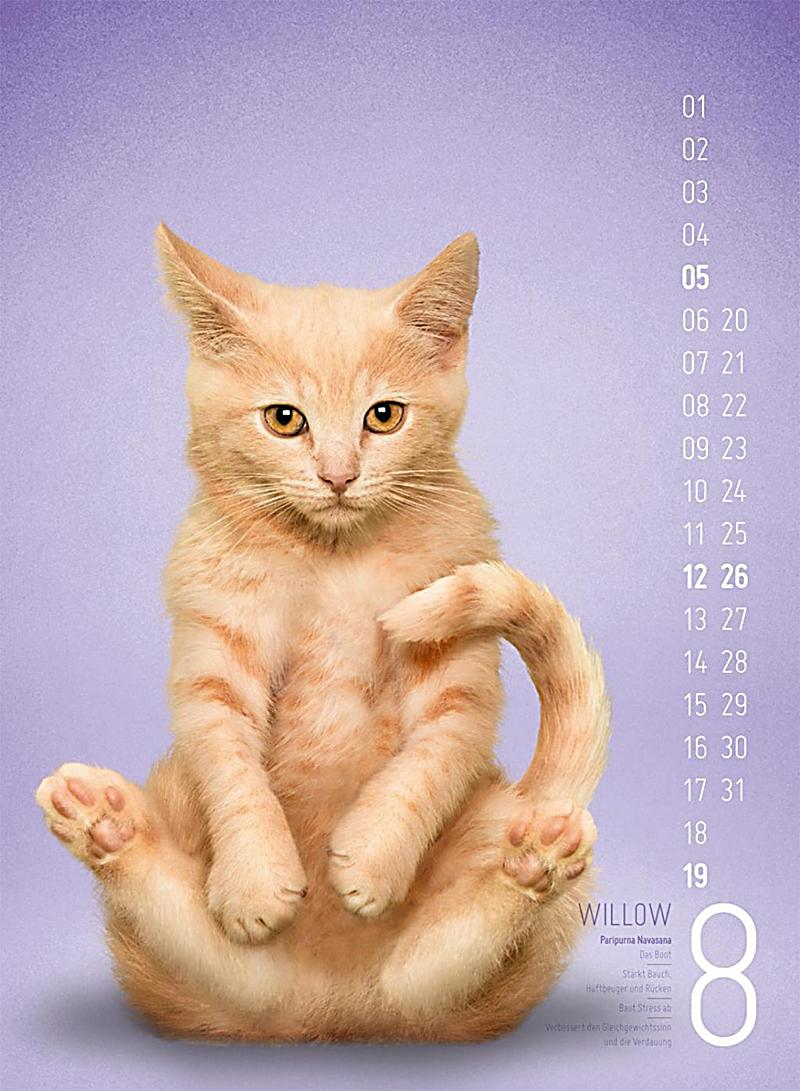 Yoga Cat Kalender