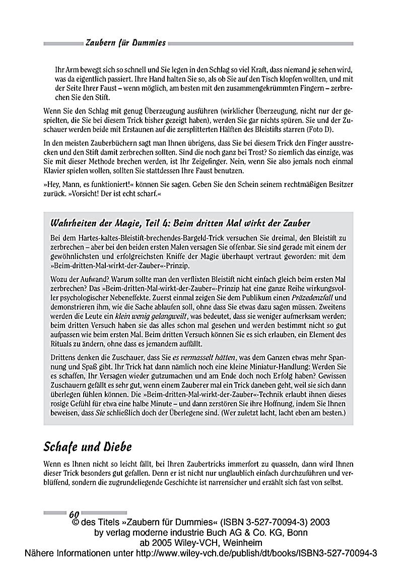 Ausgezeichnet Autoverkabelung Für Dummies Galerie - Schaltplan Serie ...