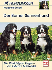 Der Berner Sennenhund