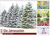 Die Jahreszeiten. Magie des Wandels (Wandkalender 2020 DIN A3 quer) - Kalender - Elisabeth Stanzer,