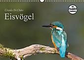 Eisvögel (Wandkalender 2017 DIN A3 quer)