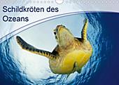 Schildkröten des Ozeans (Wandkalender 2020 DIN A4 quer) - Kalender - Henry Jager,